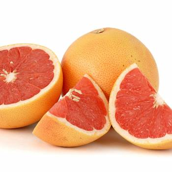 Grapefruit - Citrus paradisi