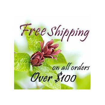 Free shipping available
