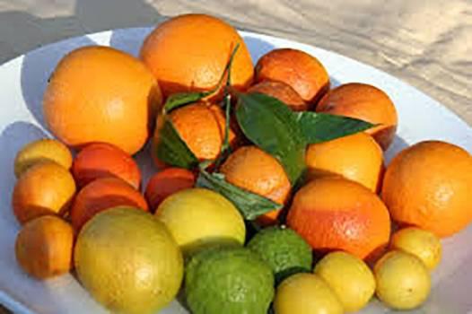 Exotic Citrus Blend