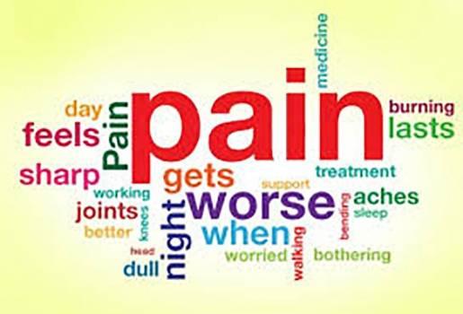 Pain Ease Blend