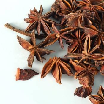 Anise Star (Illicum verum)